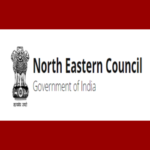 Northern Eastern Council
